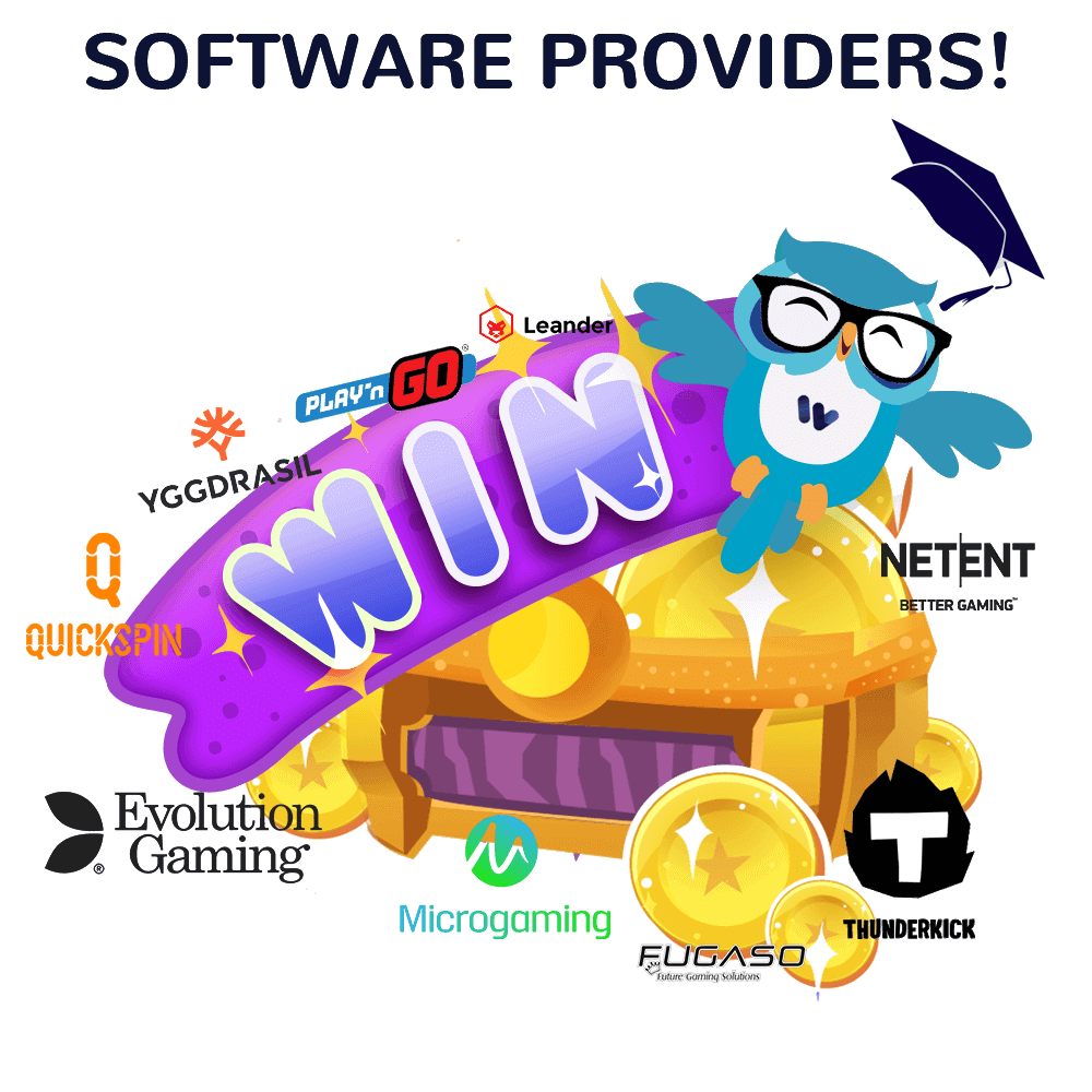 An image of software providers